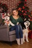 Muchacha con dos perros de árbol de navidad cercano fornido Imagen de archivo