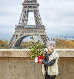 Muchacha con el árbol de navidad delante de la torre Eiffel en París Imagenes de archivo