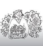 Muchacha con el compartimiento de cerezas Foto de archivo