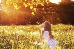Muchacha con el dundelion en parque Imagen de archivo