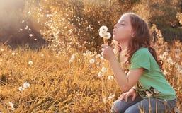 Muchacha con el dundelion en parque del otoño Imagen de archivo libre de regalías
