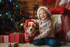 Muchacha con el enchufe Russel del perro más terier en casa con un árbol de navidad, Fotografía de archivo