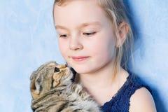 Muchacha con el gatito gris Fotos de archivo libres de regalías