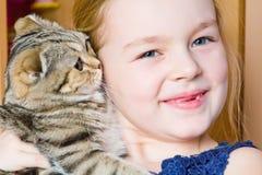 Muchacha con el gatito gris Foto de archivo libre de regalías