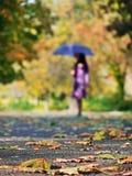 Muchacha con el paraguas en bosque Imagen de archivo