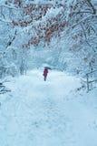 Muchacha con el paraguas en un parque del invierno imagenes de archivo