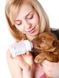 Muchacha con el perrito de Dogue de Bordeaux Fotografía de archivo libre de regalías