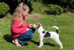Muchacha con el perro de animal doméstico fotografía de archivo