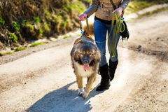 Muchacha con el perro de pastor caucásico, otoño Fotos de archivo libres de regalías