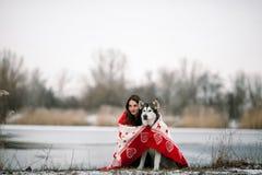 Muchacha con el perro del malamute de Alaska envuelto en manta Foto de archivo