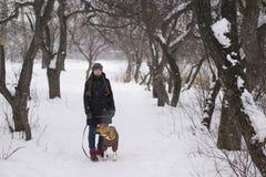 Muchacha con el perro en bosque del invierno Fotos de archivo