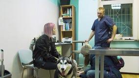 Muchacha con el perro en clínica veterinaria almacen de video
