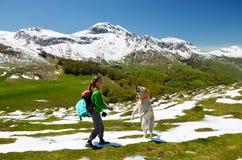 Muchacha con el perro en la primavera los Pirineos Imágenes de archivo libres de regalías