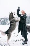 Muchacha con el perro grande del malamute en fondo del invierno Cierre para arriba Imagen de archivo libre de regalías