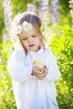 Muchacha con el pollo Fotografía de archivo libre de regalías