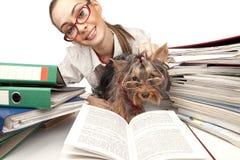 Muchacha con el terrier de Yorkshire en el vector Fotografía de archivo