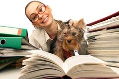 Muchacha con el terrier de Yorkshire en el vector Foto de archivo libre de regalías