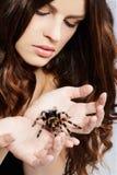 Muchacha con la araña Foto de archivo