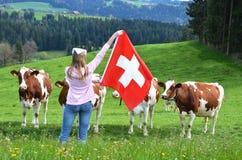 Muchacha con la bandera suiza contra vacas imagen de archivo