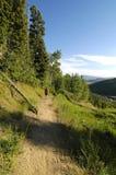 Muchacha con la camisa roja que va de excursión un rastro en el bosque Fotografía de archivo libre de regalías