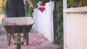 Muchacha con la carretilla con las flores metrajes