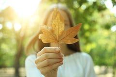Muchacha con la hoja del otoño Fotografía de archivo