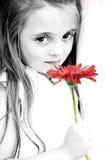 Muchacha con la margarita roja de Gerber Foto de archivo libre de regalías