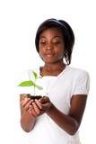 Muchacha con la planta a disposición Imagen de archivo libre de regalías