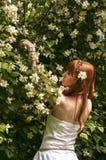 Muchacha con las flores blancas Fotografía de archivo libre de regalías