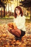 Muchacha con las hojas de arce en manos Imagen de archivo