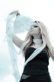 Muchacha con las plumas Imagen de archivo