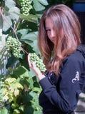 Muchacha con las uvas Foto de archivo