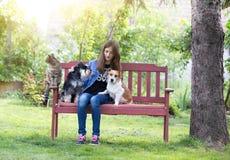 Muchacha con los animales domésticos en parque Foto de archivo libre de regalías