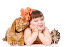 Muchacha con los animales domésticos - perro y gato Aislado en el fondo blanco Fotos de archivo libres de regalías
