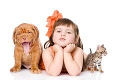 Muchacha con los animales domésticos - perro y gato Aislado en el fondo blanco Fotos de archivo