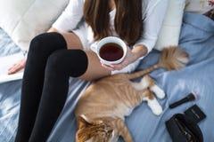Muchacha con los calcetines calientes con una taza de té, gato, cierre el libro Imagen de archivo libre de regalías