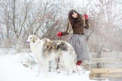 Muchacha con los galgos en el invierno, nieve que cae Foto de archivo libre de regalías