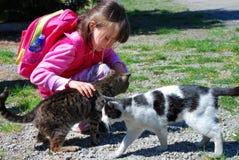 Muchacha con los gatos Fotos de archivo