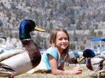 Muchacha con los patos Fotografía de archivo libre de regalías