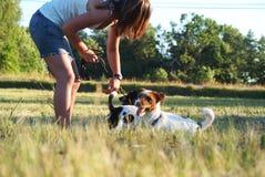 Muchacha con los perros Imágenes de archivo libres de regalías