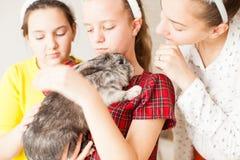 Muchacha con su animal doméstico preferido Imagen de archivo