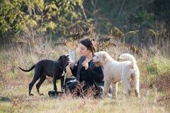 Muchacha con sus perros Fotografía de archivo