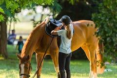 Muchacha con un caballo Fotos de archivo libres de regalías