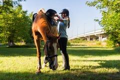 Muchacha con un caballo Foto de archivo