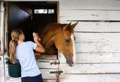 Muchacha con un caballo Fotografía de archivo