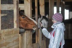 Muchacha con un caballo stabled Imágenes de archivo libres de regalías