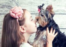 Muchacha con un perrito de Yorkshire Terrier Imágenes de archivo libres de regalías