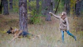 Muchacha con un perro en el bosque del otoño - mujer bonita joven que acaricia su perro - pastor alemán Foto de archivo libre de regalías