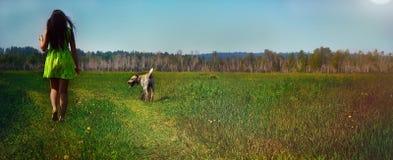 Muchacha con un perro en el verano en un prado al mediodía Fotos de archivo