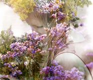 Muchacha con un ramo de hierbas fragantes foto de archivo libre de regalías